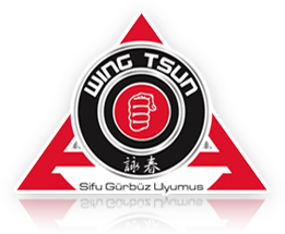 SGU Kampfkunstschulen Wing Tsun